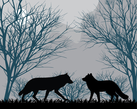 Two wolves in forest in the moonlight Stock Illustratie