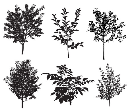 Collection of silhouettes of garden trees.