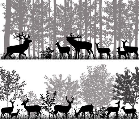 木の背景にシルエットで鹿の群れ