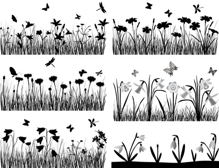 grasses: Collection of silhouettes of flowers and grasses