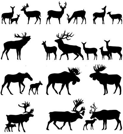 Verzameling van silhouetten van wilde dieren - de herten familie Stock Illustratie
