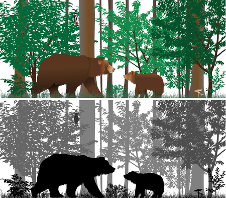 Bears on the background of trees. Colour and black-and-white vector.