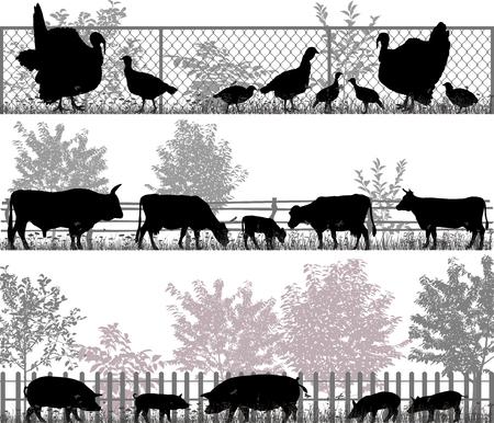 Verzameling van silhouetten van boerderijdieren - kalkoenen, koeien en varkens Stock Illustratie