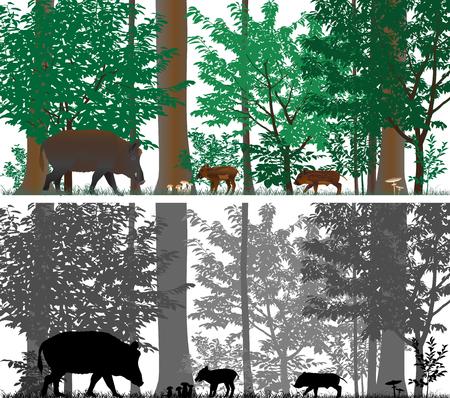 Everzwijnen op de achtergrond van bomen. Kleur en zwart-wit vector.