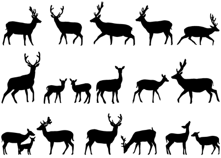 Collection of silhouettes of wild animals - the deer family Vettoriali