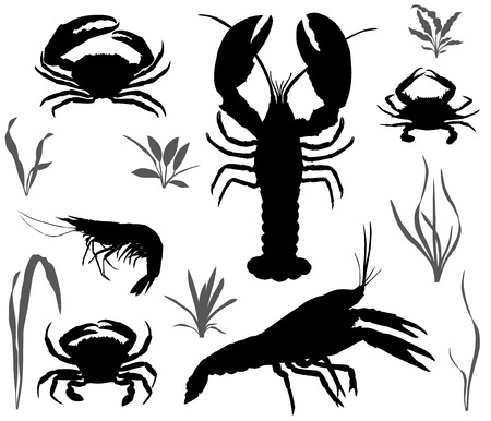Silhouetten van vier soorten schaaldieren: Kreeft, Kreeft, Kreeft en Garnalen