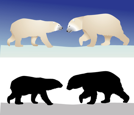 Polar bears in color image and silhouette