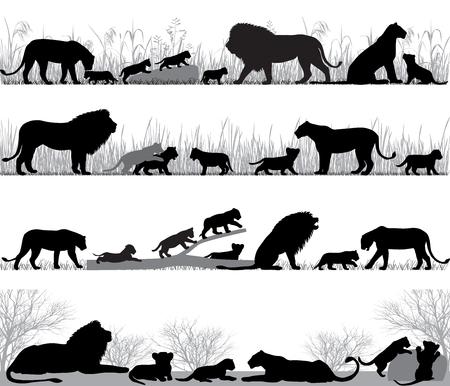 ライオンとライオン カブス屋外のシルエット