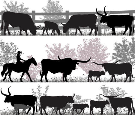 Silhouettes of cattle breed with longhorn