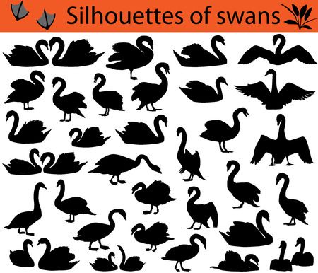 Collection of silhouettes of swans