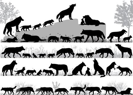 Sagome di lupi e suoi cuccioli all'aperto Vettoriali