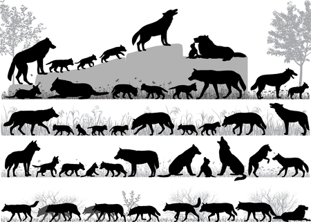 Silhouettes of wolves and its cubs outdoors 版權商用圖片 - 102668175