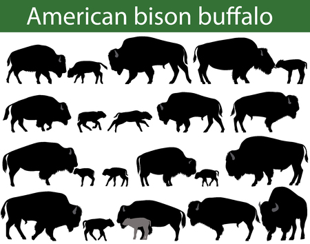 Collection of silhouettes of american bison, or buffalo Çizim