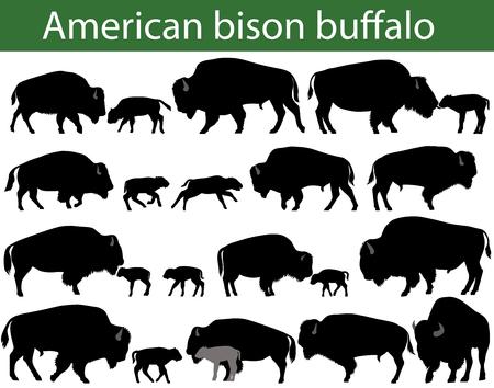 Collezione di sagome di bisonte americano o bufalo