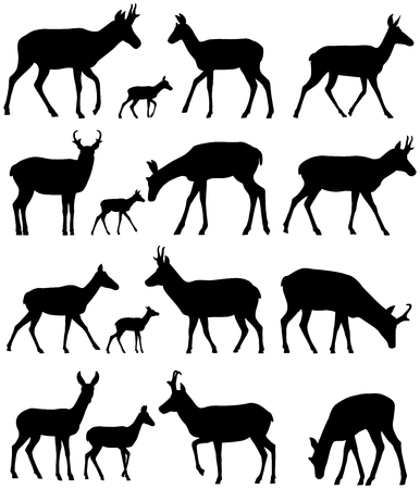 Collection of silhouettes of pronghorn antelope