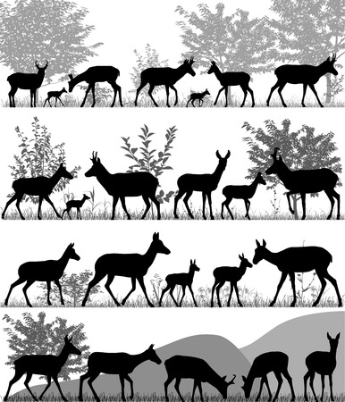 Silhouettes of pronghorn antelopes and its cubs outdoors