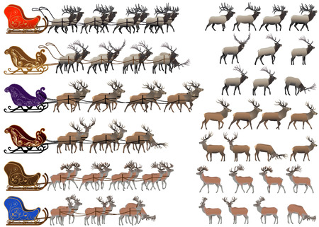 Collection of different species of red deer and deer sleds Illustration