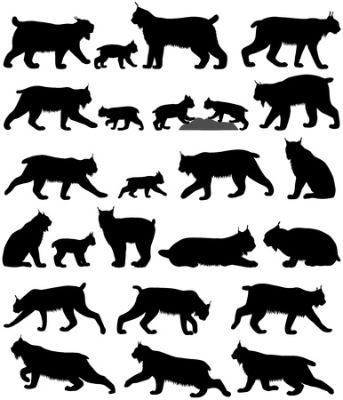 Collection of silhouettes of canadian lynxes and its kittens