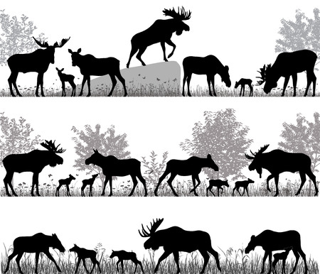 Silhouettes of mooses also named elks and its cubs outdoors Illustration