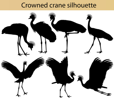 Collection of silhouettes of crowned cranes