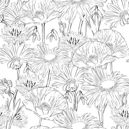 calendula: floral seamless black and white background with spring flowers Illustration