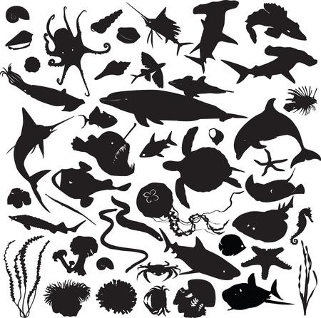 set of silhouettes of marine inhabitants