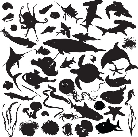 set of silhouettes of marine inhabitants Stock Vector - 13536530