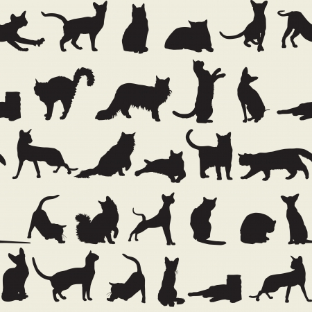 seamless background with cats Stock Vector - 15152260