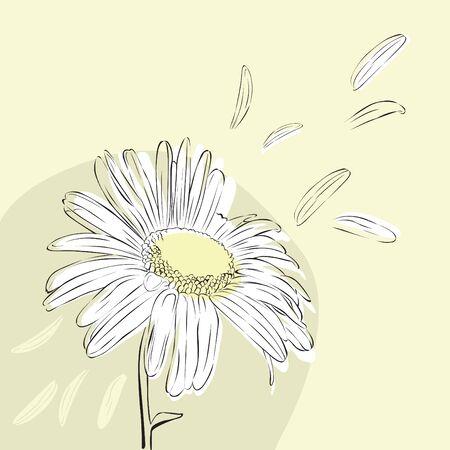minimalist: minimalist light background with Camile Illustration