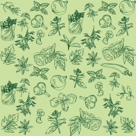 Naadloze groene achtergrond met kruiden en specerijen