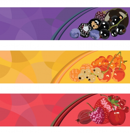 three banners with berries of different colors