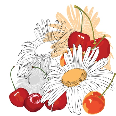 vernal: chamomile and cherry on a white background