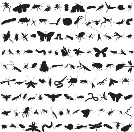 set of more than a hundred insects Vector