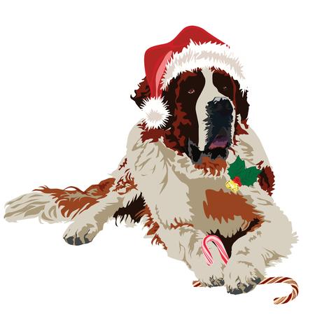 saint bernard: Dog in Santa Claus hat on white background Illustration