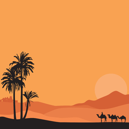 camels: summer vacation African tour