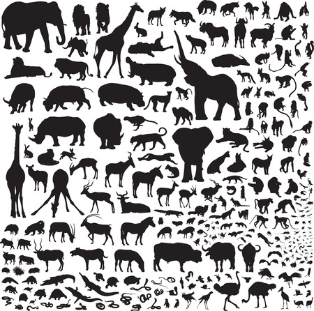 Over 200 silhouettes fauna of Africa Vector