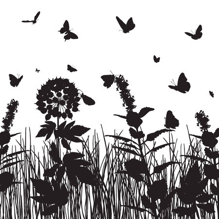 grasses: butterflies over the meadow grasses and flowers