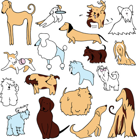 funny dogs: set of different funny dogs Illustration