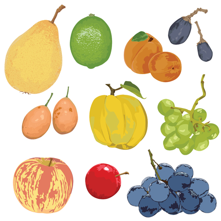 A set of fruits on a white background.