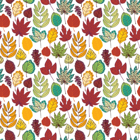 Different autumn leaves on a white background. Seamless pattern.