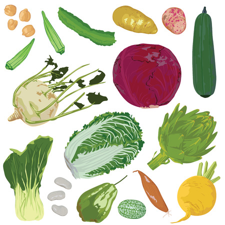set of vegetables on a white background