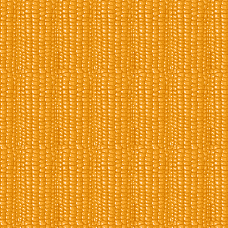 Seamless pattern. Structure of corn cobs. A lot of yellow grains. Ilustração
