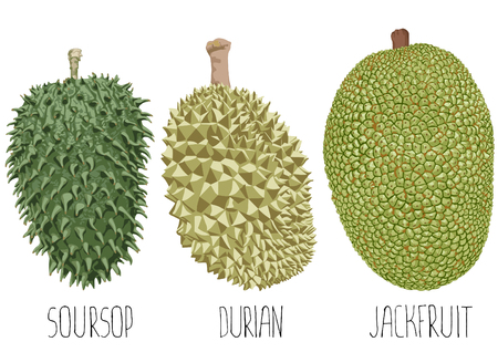 Three fruits on a white background.