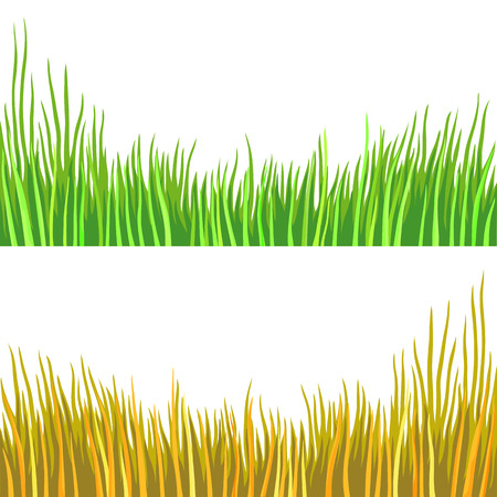 Fragment of a green grass. illustration, isolated on a white. Bright summer version. Warm autumn look. Drawn pencil tool.
