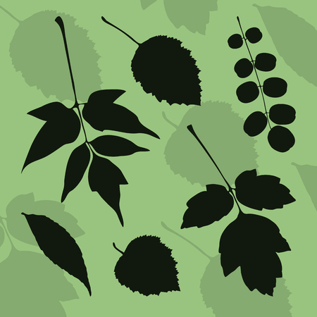 Silhouette of leaves of different species of trees on a green background. Stock  illustration for design.