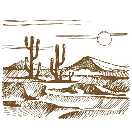 Vector sketch America landscape with cactus Illustration