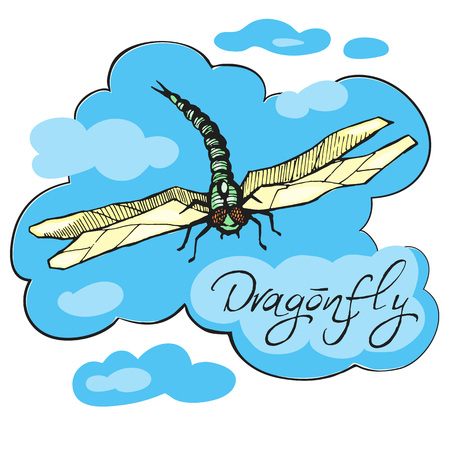 Hand drawn ink vector illustration of dragonfly Illustration