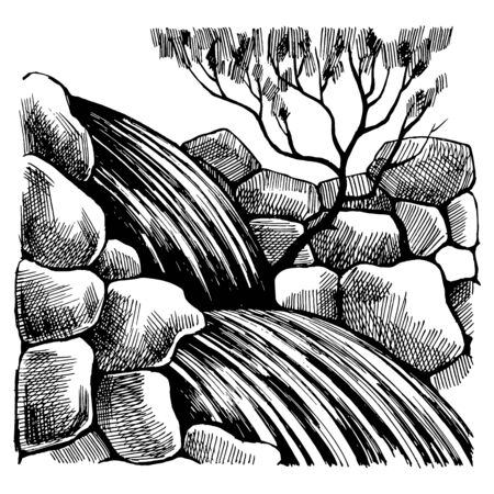 Black and White sketch drawing by hand. Illustration