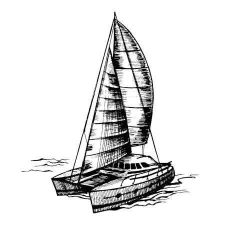 Catamaran sailboat monochrome vector Illustration