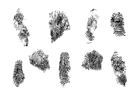Finger prints vector set. Different forms of prints and different fingers of a human hand. Stock Photo